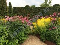 Gardens of Appeltern